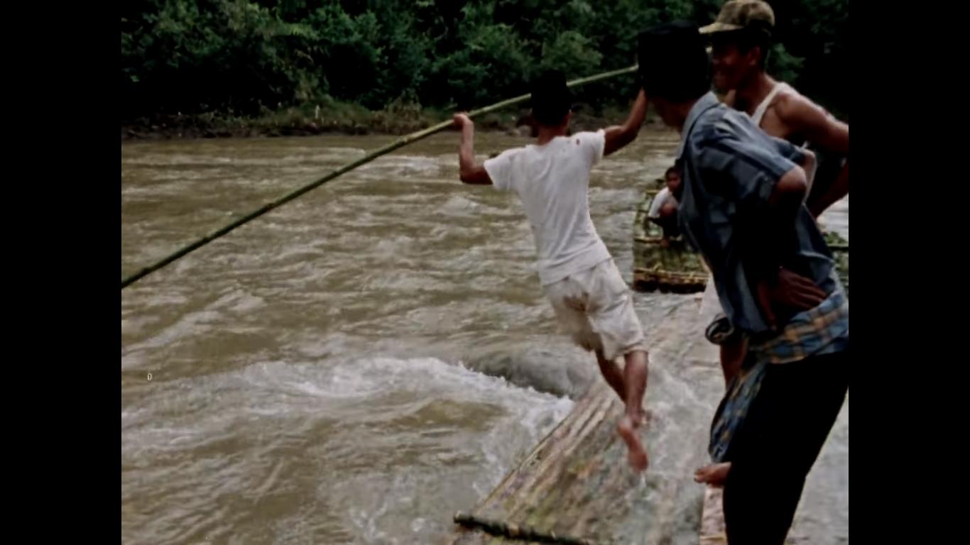Mengangkut bambu